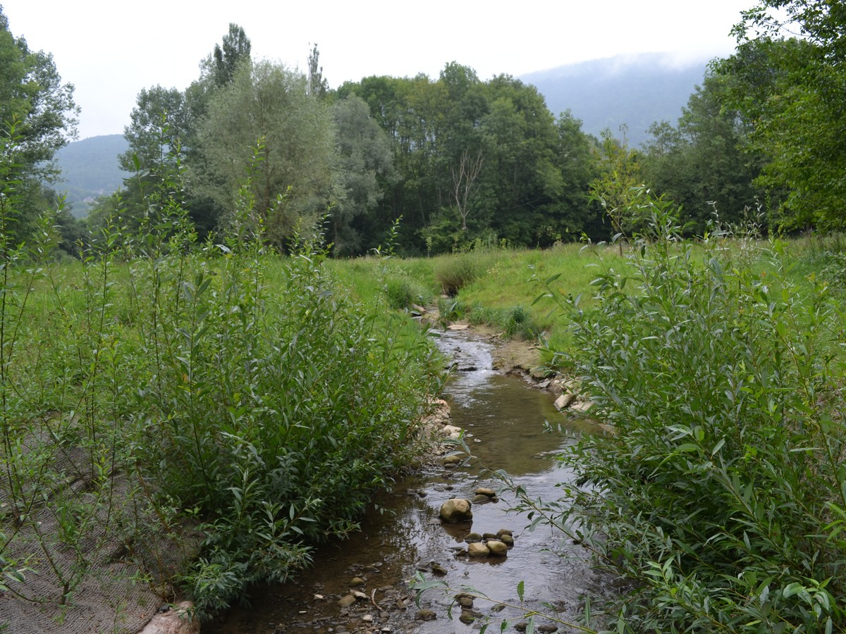 Le Foron - Contrat de rivière